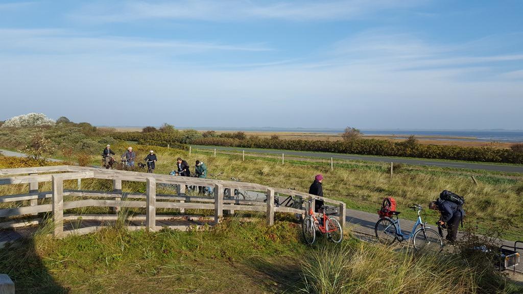 8a91cd10222484 Ausgerüstet mit Leihrädern sind elf Teilnehmer plus Waschbär plus Tobias  Epple (unser birdingtour-Führer) kreuz und quer über die Insel gefahren.