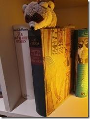 Umzug mit Büchern